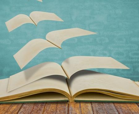 Wie es im Buche steht
